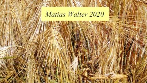 Hörnerv # 331 mit Studiogast Matias Walter